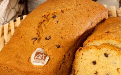 Cake aux pépites de chocolat bio  400 gr
